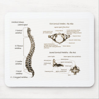 Spine Details Sepia Mouse Pad