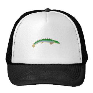 Spine Fish Hats