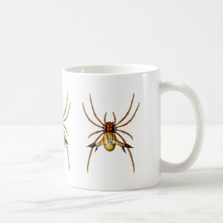 Spined Spider Mug