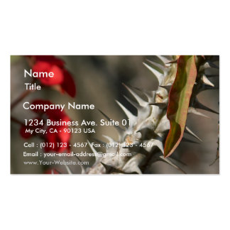 Spines On A Cactus Business Card Templates