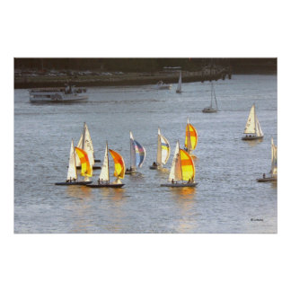 Spinnakers Grab the Wind Poster