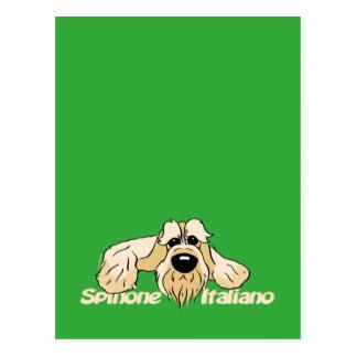 Spinone Italiano brightly head Cute Postcard