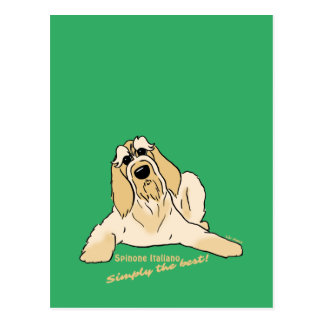 Spinone Italiano light Simply the best! Postcard