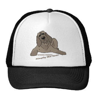 Spinone Italiano - Simply the best! Cap