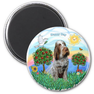Spinone Italilano (roan 11) Magnet