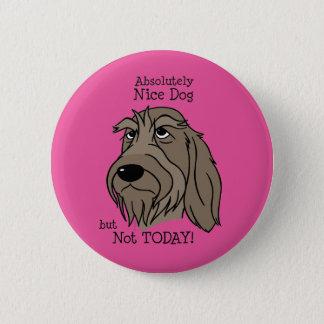 Spinone Nice dog 6 Cm Round Badge