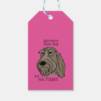 Spinone Nice dog Gift Tags