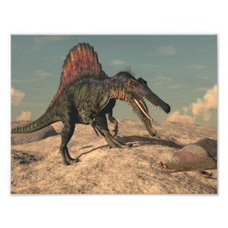 Spinosaurus dinosaur hunting a snake photo print