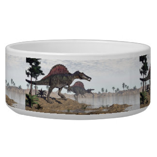 Spinosaurus dinosaurs in desert - 3D render Pet Food Bowls