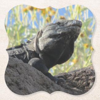 Spiny-tailed Iguana Paper Coaster