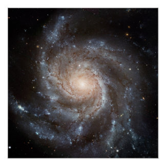 Spiral Galaxy (M101) Perfect Poster
