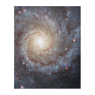 SPIRAL GALAXY M74 ACRYLIC WALL ART