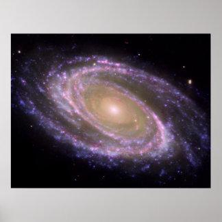Spiral Galaxy Poster/Print - NASA image