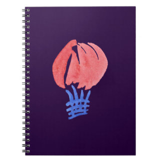 Spiral notebook with air balloon