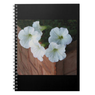 Spiral notebook with lovely white Petunias