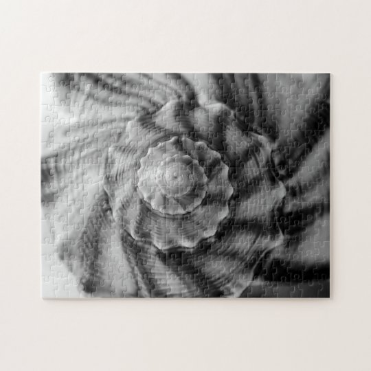 Spiral Shell, Black and White, Jigsaw Puzzle