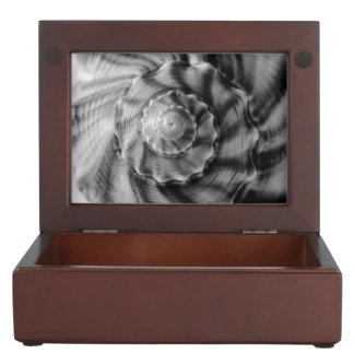 Spiral Shell, Black and White Memory Boxes