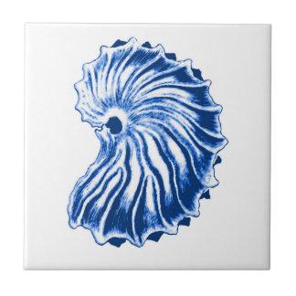 Spiral Shell, Indigo Blue and White Ceramic Tile