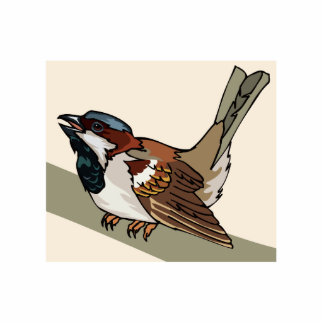 Spiral Sparrow Photo Cut Out