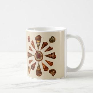 Spire Shells Mug