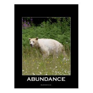 Spirit Bear Gifts Postcard