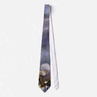 Spirit Eagle Art Tie