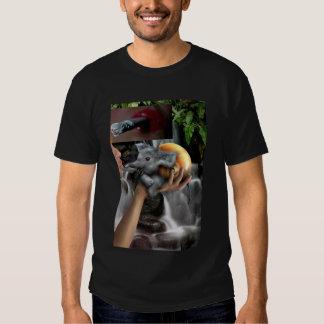 Spirit Hushings of Enley T-shirts