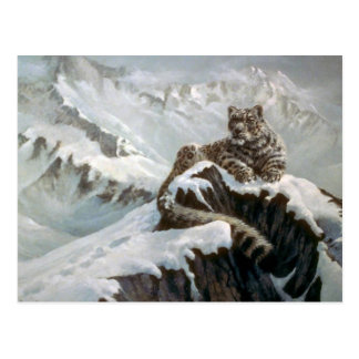 Spirit of the mountains, Snow Leopard Postcard