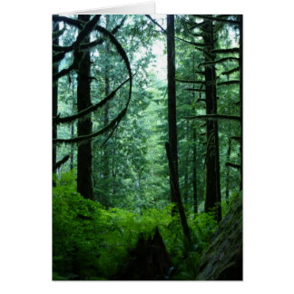 Spirit of the Woods 2 - Greeting card