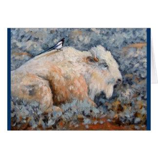 Spiritual White Buffalo Fine Art Card
