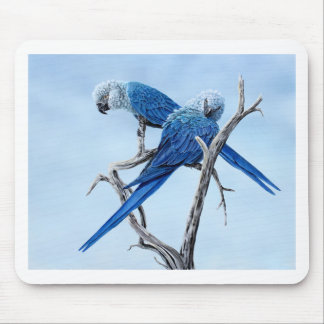 Spix Macaw gifts for the Spix lover Mouse Pad