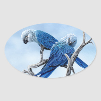 Spix macaw. The blue Parrot of the film Rio. Oval Sticker