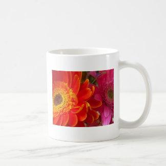 Splash of Color Basic White Mug