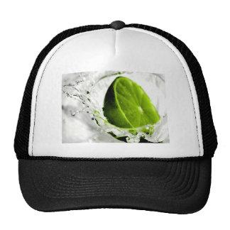 Splash Of Lime Hat