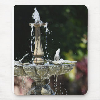 Splashing from the Water Fountain at Hollis Garden Mouse Pad