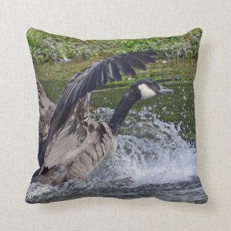 Splashy Landing Canada Goose Cushion