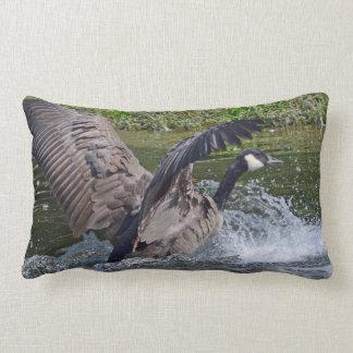 Splashy Landing Canada Goose Lumbar Cushion