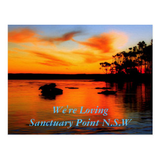 Splendid Sanctuary Postcard