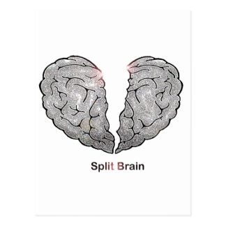 Split Brain Postcard