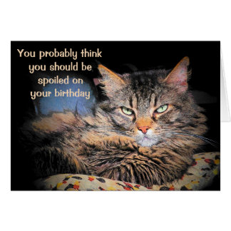 Spoiled On Your Birthday?  Think You're A CaT? Card