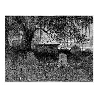 Spooky Halloween Graveyard Postcard