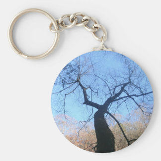 Spooky Tree Basic Round Button Key Ring