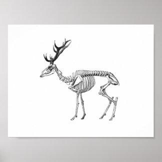 Spooky vintage skeleton reindeer drawing poster