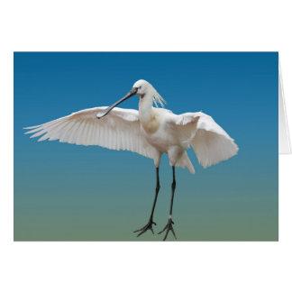Spoon heron landing card
