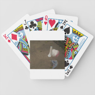 Spoonbill and Turkey Bicycle Playing Cards