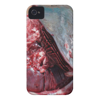 sport fishing iPhone 4 Case-Mate case