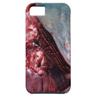 sport fishing iPhone 5 cases