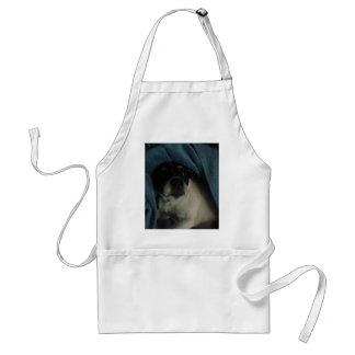 spot apron