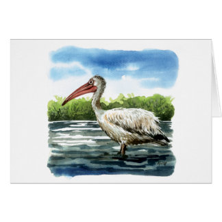 Spot billed pelican card