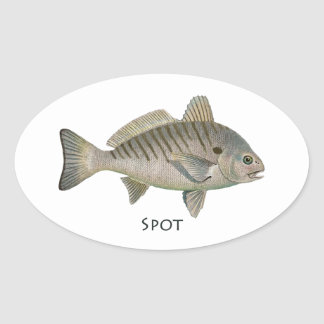 Spot Fish Oval Sticker